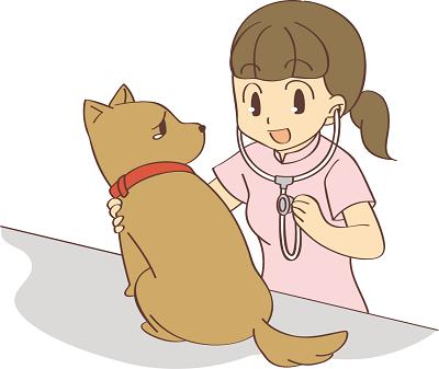 犬、猫を中心にペットシッターを東京世田谷区でお探しの方へ、評判の世田谷区対応ペットシッターを介護、老犬ちゃん老猫ちゃんなどサービス内容、料金等々を比較してまとめてみました。お役に立てれば幸いです。世田谷区ペットシッター400-1