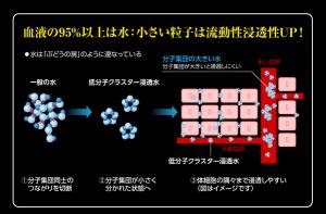 リセラ低分子クラスター浸透水評判口コミ600-4